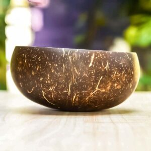Coconut Shell Bowls with coconut spoon