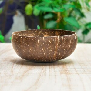 Coconut Shell Bowl with Coconut Spoon set