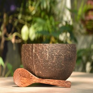 Coconut Shell Bowl with Coconut Spoon
