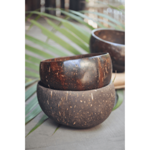 coconut bowl, vegan bowl, coconut shell