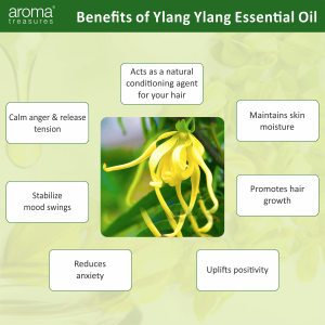 Aroma Treasures 100% Pure and Natural YlangYlang Essential Oil (10ml)