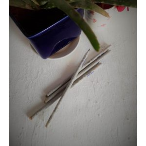 pencil, newspaper pencil, paper pencil, stationery, stationery items, online stationery store, school stationery, stationery online, eco friendly stationery, eco friendly, plantable pencils