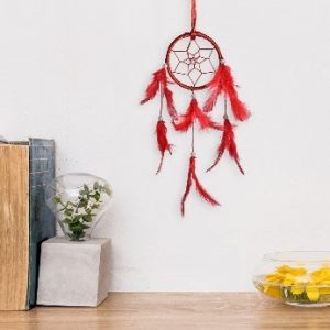car hanging, wall hanging, dream catcher, dreamcatcher
