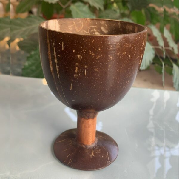 Coconut shell cups-4